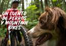 Un cuento de perros & mountain bikes